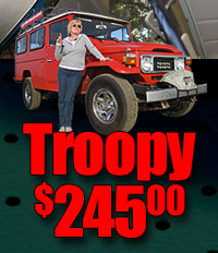 Back by popular demand Troopy Land Cruiser Headliners